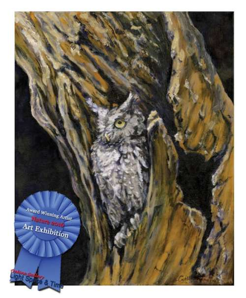 Special Recognition Award for Outstanding art in Nature Exhibition